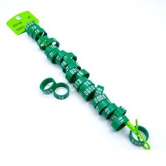 Fixed foot ring green