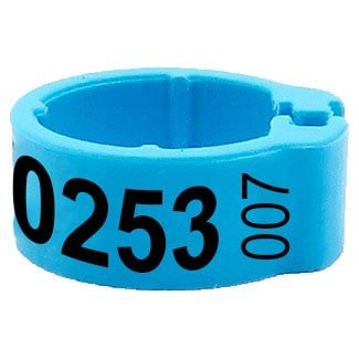 Knijpring telefoonnummer + startnummer lichtblauw 5