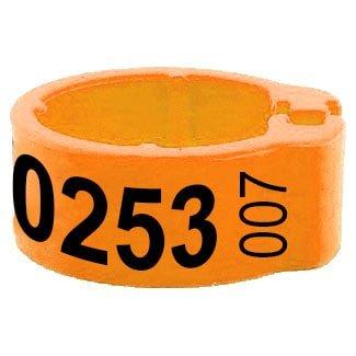 Knijpring telefoonnummer + startnummer oranje 5