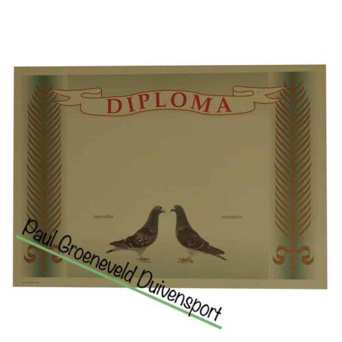 duivendiploma-duiven-diploma